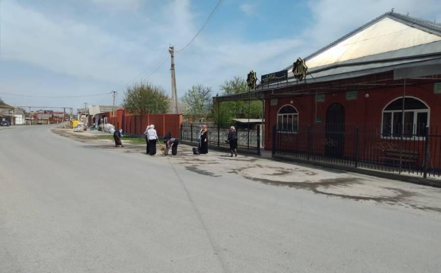В населенных пунктах Сунженского района прошла масштабная эко-акция