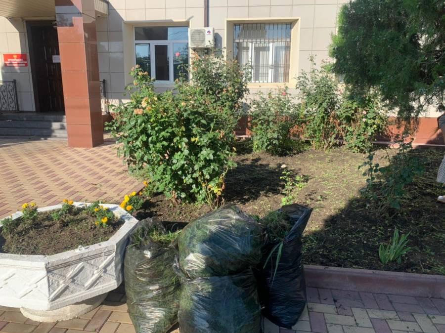 Работники администрации Сунженского района вооружившись граблями, метлами имешками, провели уборку прилегающей к администрации района территории и двора.