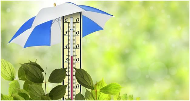 Чтобы не пострадать от жары необходимо соблюдать простые правила